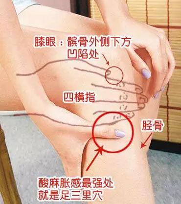 男人补气 女人补血的艾灸法 实用图片